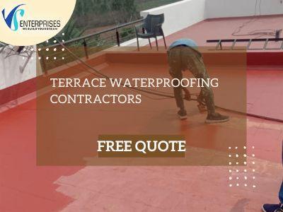 Canaries $75 ( Birds )